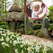 Prinz George beerbt das Baumhaus seines Vaters