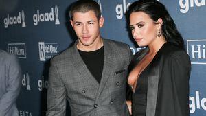 Demi Lovato und Nick Jonas auf dem roten Teppich
