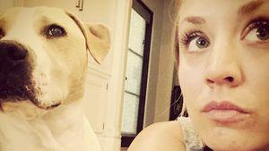 Kaley Cuoco und Hund Norman Cook