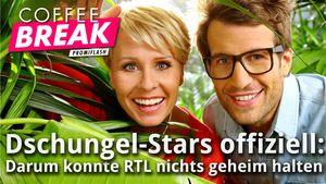 Thumbnail: Dschungel-Stars offiziell: Darum konnte RTL nichts geheim halten