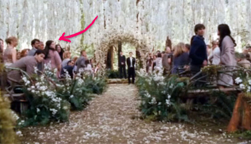 Breaking Dawn, Stephenie Meyer - Bei der Breaking Dawn-Hochzeit spielt Stephenie Meyer mit