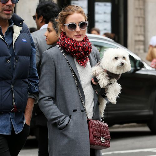 Olivia Palermo bewies gerade mal wieder ihren guten Modegeschmack