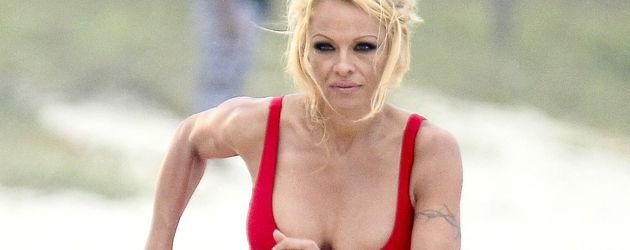Sex-Bombe mit 46 Jahren: Pamela Anderson: So kam es