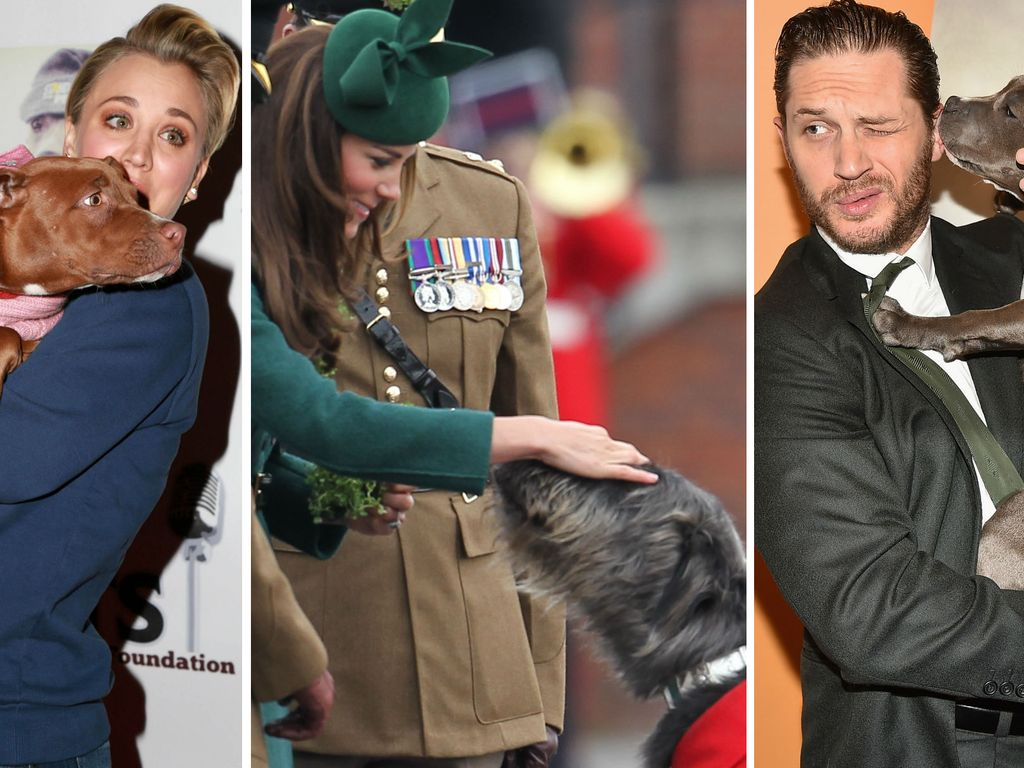 Herzogin Kate, Kaley Cuoco und Tom Hardy