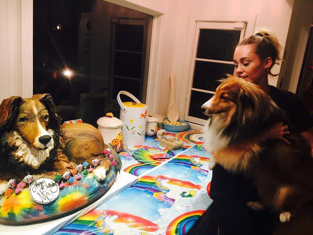 Sängerin Miley Cyrus mit ihrem Hund Emu