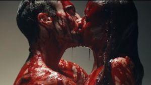 Adam Levine: Heiße Bett-Szenen mit seiner Behati