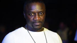 Voll auf die Fresse! Rapper Akon stürzt beim Crowdsurfen ab
