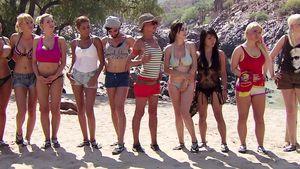 Favoritensturz bei den Wild Girls: Wer ist raus?