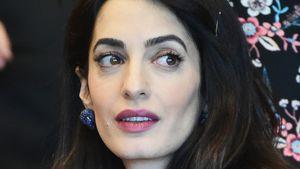 Amal Clooney: DAS nervt sie an ihrem Beruf als Anwältin!