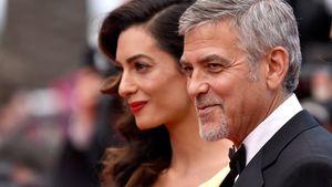 """Amal und George Clooney bei der """"Money Monster""""-Premiere beim Filmfestival Cannes 2016"""