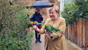Das Netz feiert die coolen Vogel-Fotos der Bundeskanzlerin!
