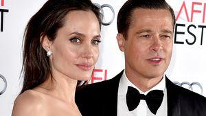 Haben sich Brad Pitt und Angelina über Schulform geeinigt?