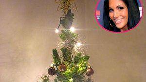 Klein, aber fein! Weihnachtsbaum-Parade bei Anja Polzer