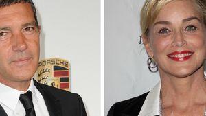Was läuft da bei Antonio Banderas & Sharon Stone?
