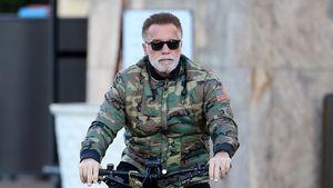 Kaum erkannt: Arnold Schwarzenegger trägt grauen Vollbart