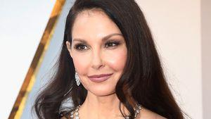 Unfall im Regenwald: Ashley Judds Bein hatte keinen Puls