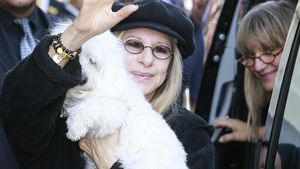 Barbra Streisand: Koch und Massagen für ihre Hunde
