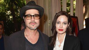 Brad und Angelinas Scheidung: Beweise für häusliche Gewalt?