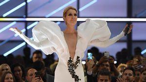 Klartext-Interview: Liebt Celine Dion wirklich ihren Tänzer?