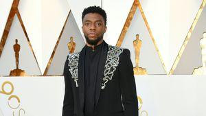 """""""Lieblos"""": Fans kritisieren In-Memoriam-Clip der Oscars"""