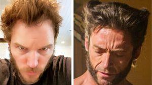 Zum Verwechseln ähnlich: Chris Pratt sieht aus wie Wolverine