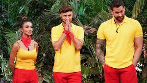 Aus für Oli: Sam und Christina sind im Dschungel-Halbfinale