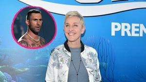 Für 45 Millionen: Ellen DeGeneres kauft Adam Levines Villa