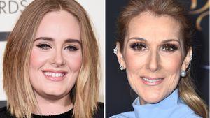 Eingerahmt! Adele besitzt gekauten Kaugummi von Céline Dion