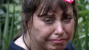 Das Netz dreht durch: Tina York schon jetzt Dschungel-Queen!
