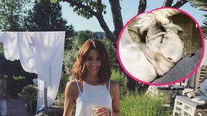 Vannessa Mai und ihr Hund Ikaro