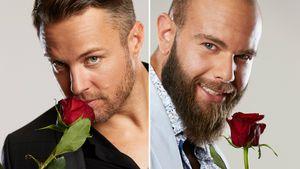 Daniel vs. Oggy: Auf welcher Seite stehen Bachelorette-Fans?
