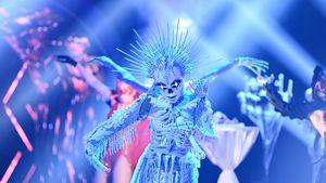 """Nach """"Masked Singer""""-Auftakt: Dieses Kostüm ist Fan-Liebling"""