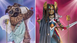 """Sind diese Kostüme schon jetzt """"Masked Singer""""-Favoriten?"""