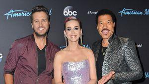 """Tragischer Autounfall: """"American Idol""""-Star stirbt mit 36!"""