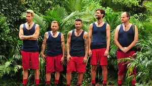 Florian, Thomas, Marc, Honey und Markus in der Dschungelprüfung
