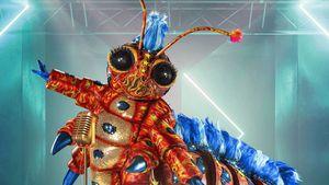 """""""Wunderschön"""": Das ist das zehnte """"Masked Singer""""-Kostüm!"""