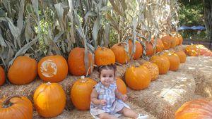 Kürbis-Cutie: Diese Promi-Kids sind im Halloween-Rausch