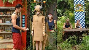 Diese Dschungelprüfung fandet ihr am schwersten!
