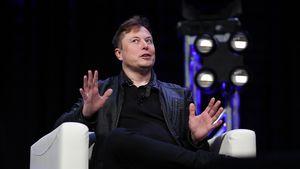 Tesla-CEO Elon Musk beantragt jetzt diesen absurden Titel!