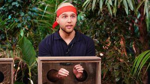 Kurz vor Dschungel-Finale: Wie schätzt Filip Konkurrenz ein?