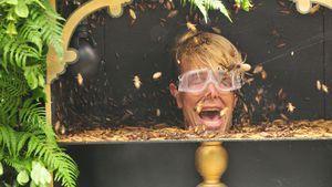 Florian Wess in der Dschungelprüfung