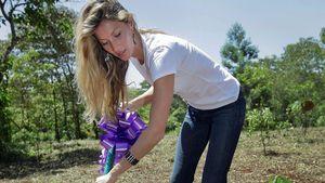 Gisele Bündchen pflanzt 40.000 Bäume zum 40. Geburtstag