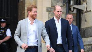 Harry und William: Weiterhin über Video-Calls in Kontakt!