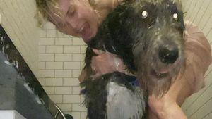 Privater Einblick: Heidi Klum in der Dusche mit ihren Hunden