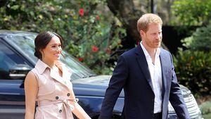Bestätigt: Harry und Meghan kauften Lilibet-Diana-Webseiten
