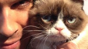 """Schnuckiputz!"" Ian Somerhalder liebt Grumpy Cat"