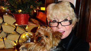 Nach Hunde-Drama: Ingrid Steeger hat Vierbeiner wieder