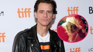 Es gab Alternativen: Jim Carrey fast nicht Grinch geworden!