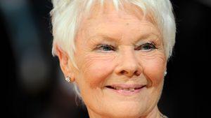 """""""James Bond""""-Star Judi: David ist etwas Außergewöhnliches"""