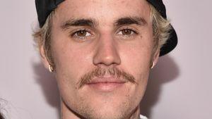 """Justin Bieber im Babytalk: Er will gleich ein ganzes """"Rudel"""""""